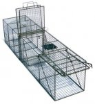 "Transfer Trap (With Guillotine Rear Door) 12"" x 12"" x 36"""
