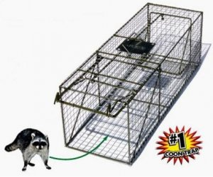 "Live Animal Trap 15"" x 15"" x 48"" Without Live Box"