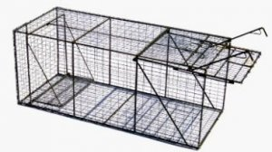 "Live Animal Trap w/o Live Box 24"" x 24"" x 60"""