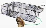 "Live Animal Trap with Live Box 24"" x 24"" x 60"""