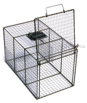 "Transfer Cage With Guillotine Door 14"" x 14"" x 24"" [410]"