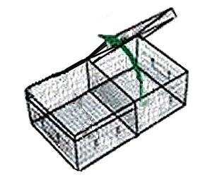 Two Compartment Show Cage w/ Metal Drip Pan